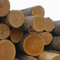 cherry-wood-932411