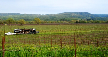 F How many people can say they've slept in a Vineyard! RVing gives you so many unique options for adventure..jpg